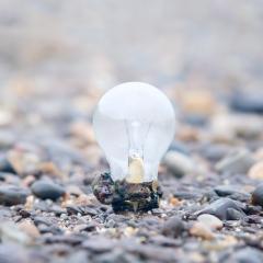 Light bulb found on the Thames estuary