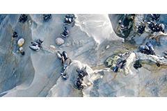 Blue Mussels, Blue Slate