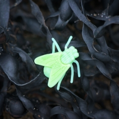 Life-size plastic fly