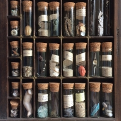 Cabinet of finds from making 'Sea & Shore Cornwall'